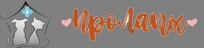 Ветклиника ПроЛапы Логотип
